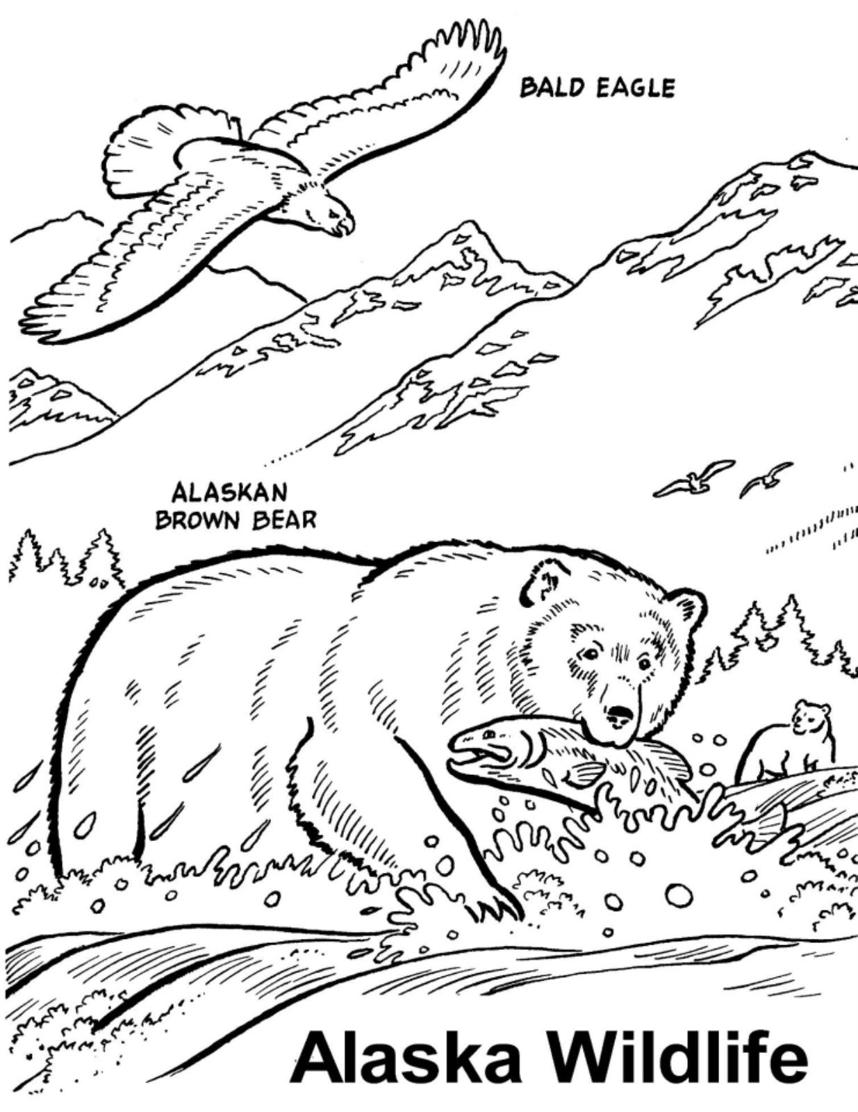 Alaskan Malamute Coloring Pages Coloring Coloring Pages